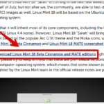 「Linux MInt 18 Beta」をEeebook(X205TA)で試してみた【常用可】